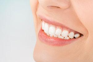 Paradontologie- Zahnarztpraxis Dr. Rebecca Bell